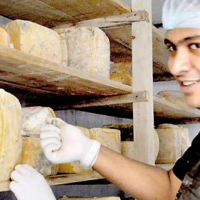 Jezeem Jameel: A Cheese Maker inKandy