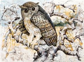 Laki Senanayake: Laki's owls all flocktogether