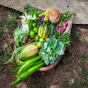 17 Organic Vegetables